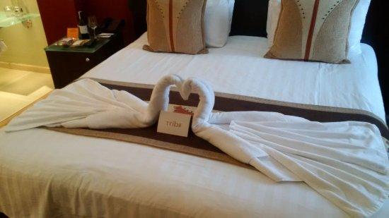 Tribe Hotel: IMG-20170828-WA0016_large.jpg