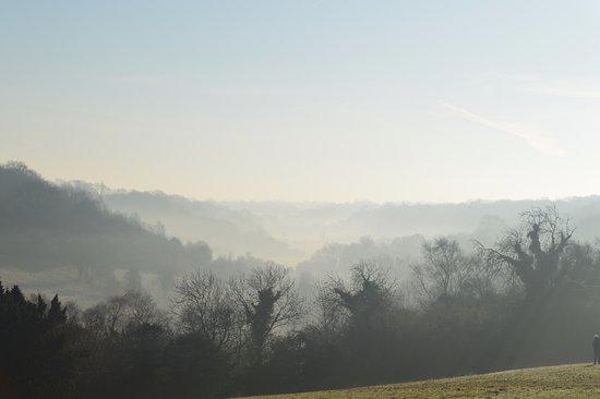 Haywards Heath, UK: JAN 17