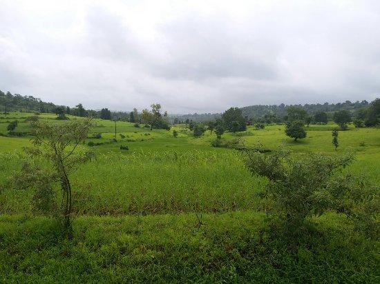 Отели Jawhar