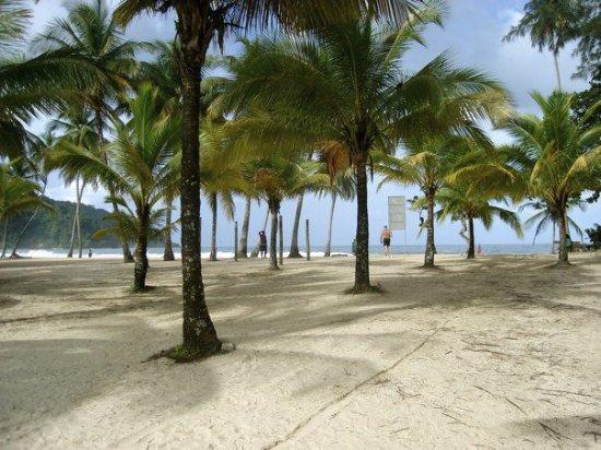 Radisson Hotel Trinidad: beach Trinidad style