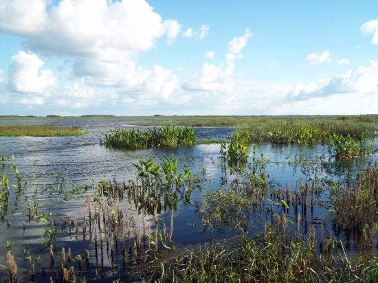 Province of Corrientes, Argentina: Parque Nacional Mburucuyá