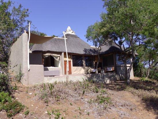 Amakhala Game Reserve-billede