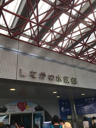 しながわ水族館, photo0.jpg