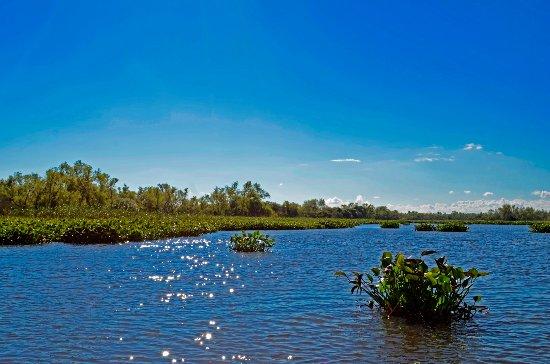 מחוז אנטרה ריוס, ארגנטינה: Parque Nacional Pre-Delta
