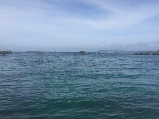 Puerto Villamil, Equador: Snorkel en Concha de Perla