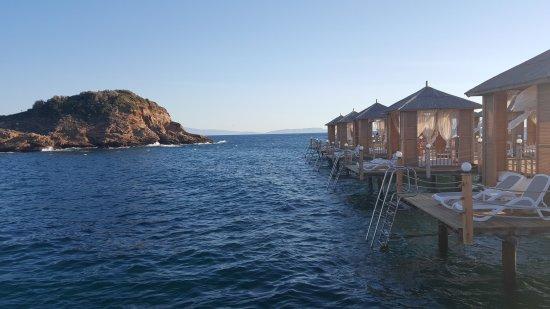 Ozdere, Tyrkia: 20170906_182845_large.jpg