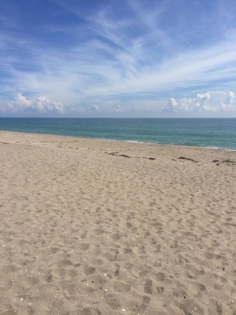 Hutchinson Island, Floryda: Beach next to the large pool