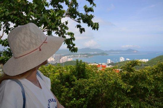 Sanya, China: Олень повернул голову Luhuitou Park парк в Санье