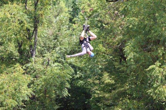 Foxfire Mountain Adventures: FB_IMG_1504714964233_large.jpg