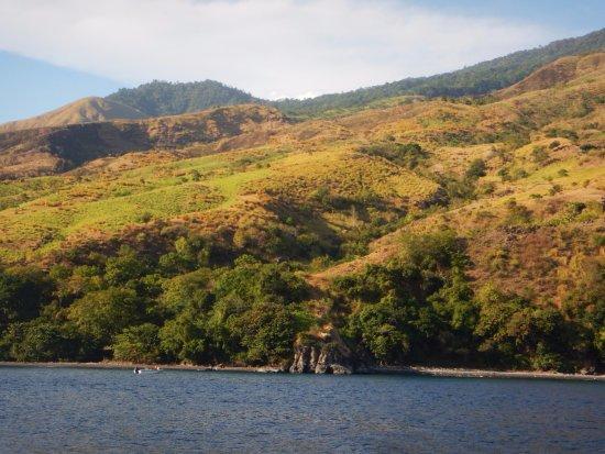 Kerobokan, Indonesia: SITE DE PLONGEE
