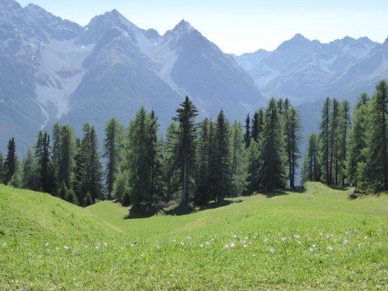 Ftan, Zwitserland: Vue près du télésiège, station Prui