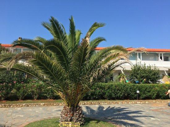 Antigoni Beach Hotel Sithonia Halkidiki