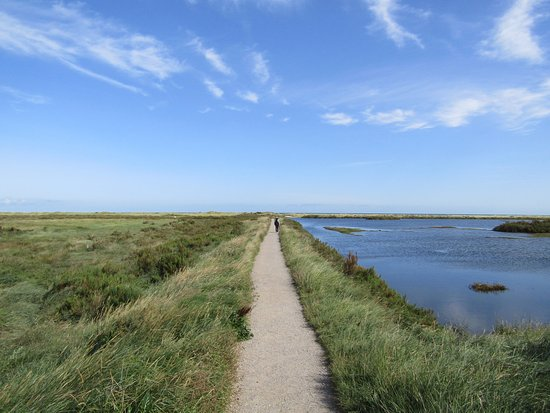 Titchwell. A magical place!
