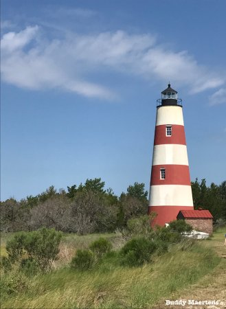 Darien, GA: Sapelo Island Lighthouse. B&B is very near the ferry terminal to the island.