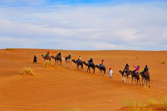 Marrakesh Quad Biking: Merzouga Camel Trek