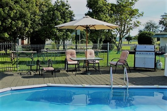 Wairoa Motel: Outdoor swimming pool and BBQ area