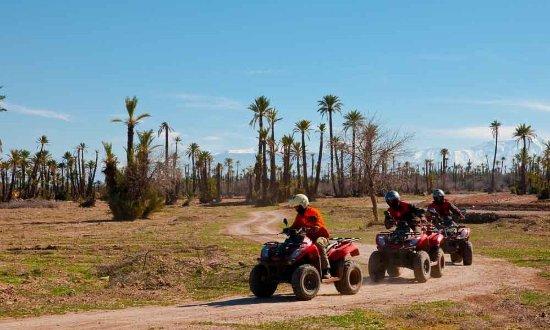 Marrakesh Quad Biking: Quad Biking in Marrakech