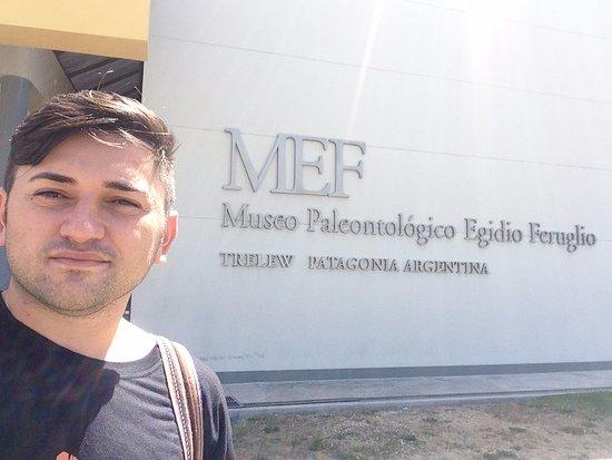 Museo Paleontologico Egidio Feruglio: Museum