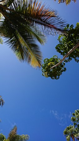 IFA Buenaventura Hotel: Blue skies