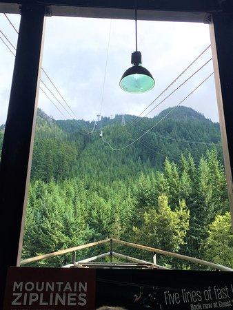 Норт-Ванкувер, Канада: Grouse mountain Gondola
