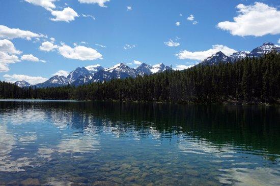 Herbert Lake Photo