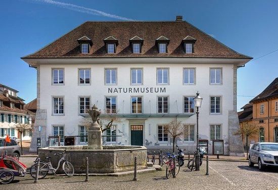 Solothurn, Switzerland: Das Naturmuseum auf dem Klosterplatz.