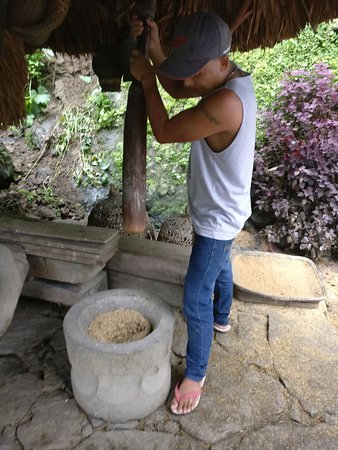 Batad, Filipinas: You can experience traditional milling of rice
