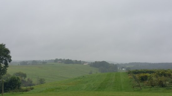 Mechanicstown, Ohio: Tasting Room and View