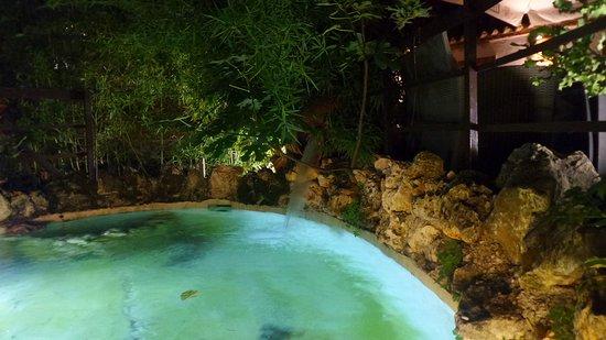 Ca'Solare: Piccola piscina