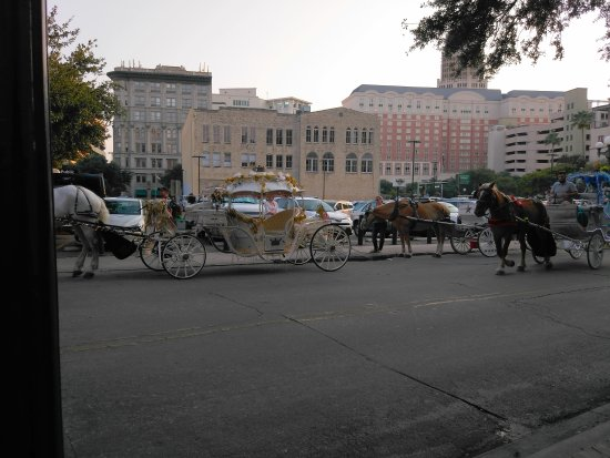 Crockett Hotel: Rides available right outside hotel