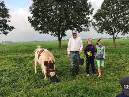 Boazum, Países Bajos: Nij Wybranda