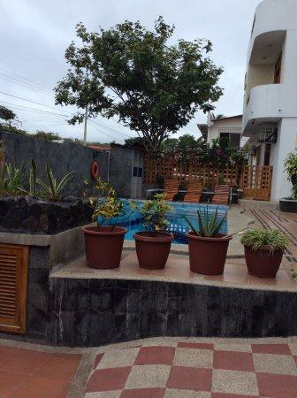 Villa Laguna: vista piscina