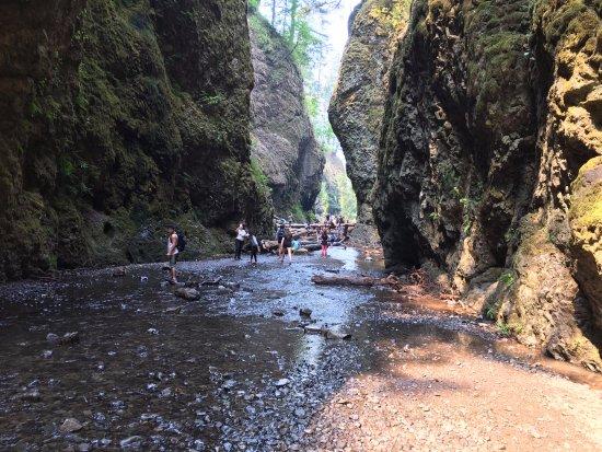 Cascade Locks, Oregón: trail!