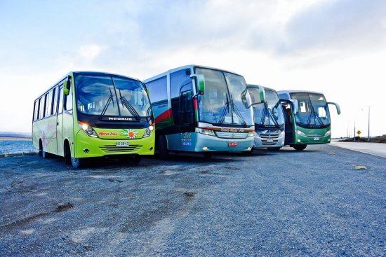 buses maria jose puerto natales 2018 all you need to know before