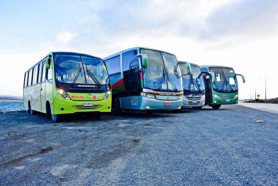 Buses Maria Jose