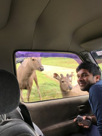 Blue Lanka Tours: Sri Lanka