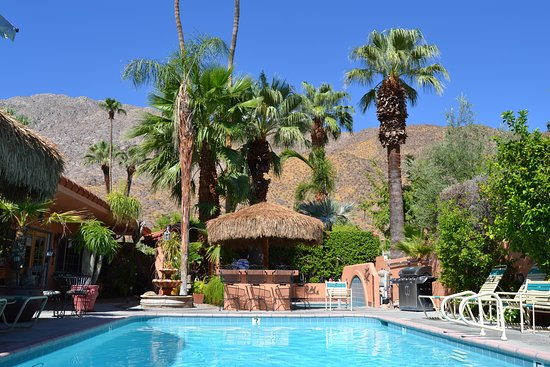 The Coyote Inn: The pool before dinner