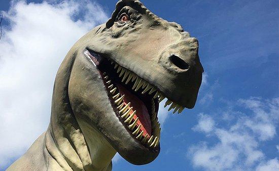 Niikappu-cho, Japan: 迫力ある恐竜がズズーン