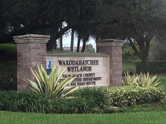 Wakodahatchee Wetlands Photo