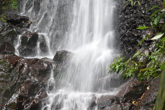 El Silencio Lodge & Spa: Wanderung in der Umgebung
