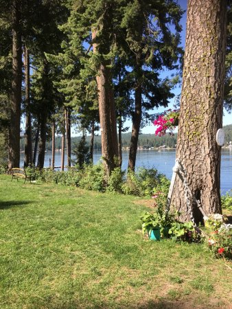 Loon Lake, WA: Beautiful park.  Feel in love with its beauty & charm. You feel part of the history & feel like