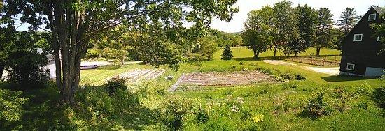 Frelighsburg, Canada: Le jardin, vu de la terrasse