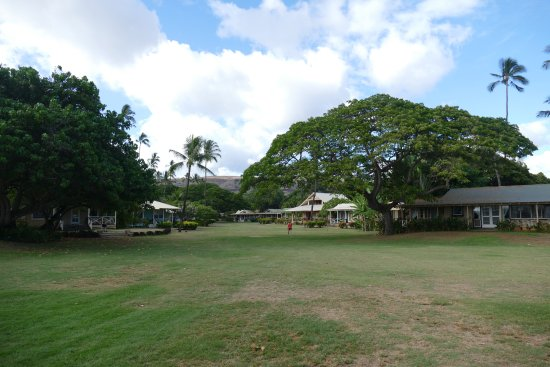 Waimea Plantation Cottages: Grassy field (great for tossing the frisbee)