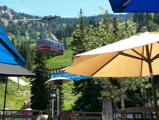 Summer Time at Snowbird