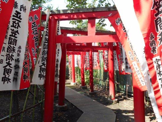 Fussa, Япония: 熊野神社の鳥居