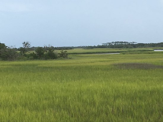 Bald Head Island, NC: Marshes