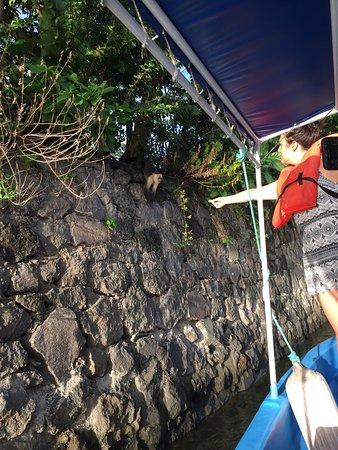 Pachamama Travel & Adventure: photo1.jpg