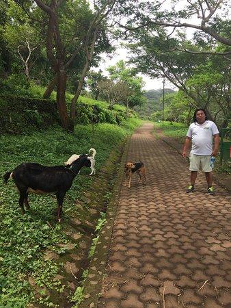 Granada, Nicaragua: photo4.jpg