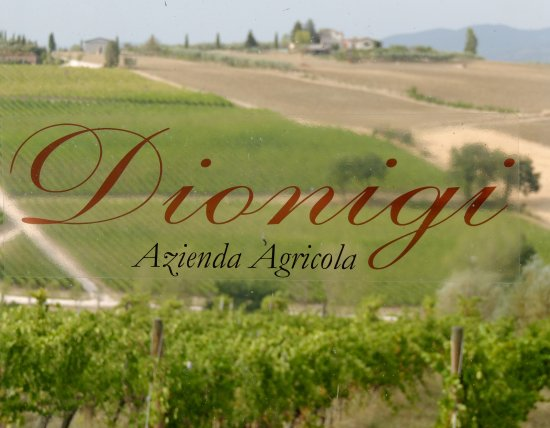 Tordandrea, İtalya: View from the Dionigi winery