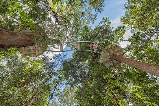 Wyong Creek, Australia: Adventure Park